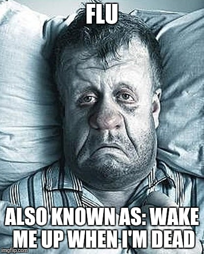 I probably should visit a casting for The Walking Dead | FLU ALSO KNOWN AS: WAKE ME UP WHEN I'M DEAD | image tagged in memes,funny,the walking dead,flu | made w/ Imgflip meme maker