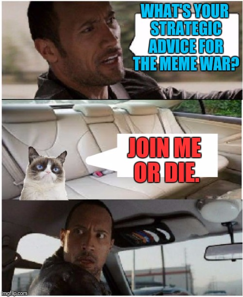 THE MEME WAR! OCT 1 THROUGH 7. A Raveniscool27/Pipe_Picasso event. :D | WHAT'S YOUR STRATEGIC ADVICE FOR THE MEME WAR? JOIN ME OR DIE. | image tagged in the rock driving grumpy cat,funny,cats,animals,meme war,humor | made w/ Imgflip meme maker