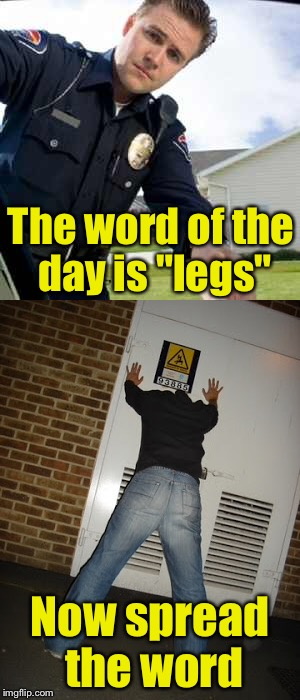 "Word of the day | The word of the day is ""legs"" Now spread the word 