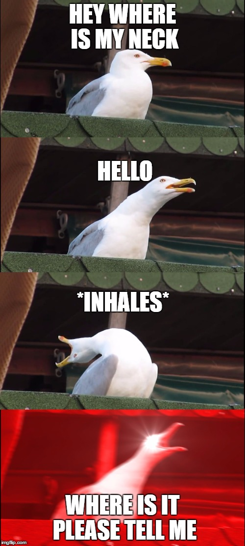 Inhaling Seagull Meme | HEY WHERE IS MY NECK WHERE IS IT PLEASE TELL ME *INHALES* HELLO | image tagged in inhaling seagull | made w/ Imgflip meme maker