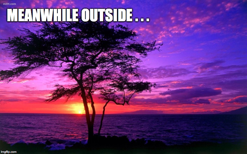 MEANWHILE OUTSIDE . . . | made w/ Imgflip meme maker