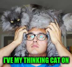 I'VE MY THINKING CAT ON | made w/ Imgflip meme maker