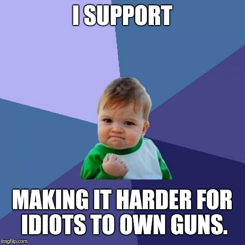 Success Kid Meme | I SUPPORT MAKING IT HARDER FOR IDIOTS TO OWN GUNS. | image tagged in memes,success kid | made w/ Imgflip meme maker