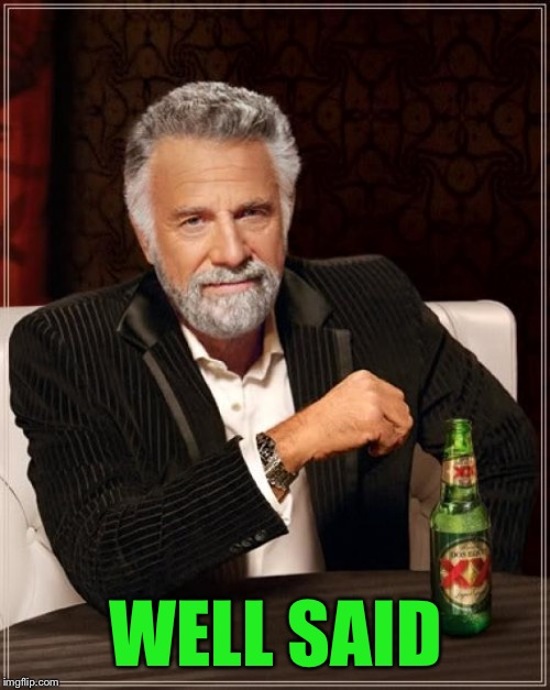 The Most Interesting Man In The World Meme | WELL SAID | image tagged in memes,the most interesting man in the world | made w/ Imgflip meme maker