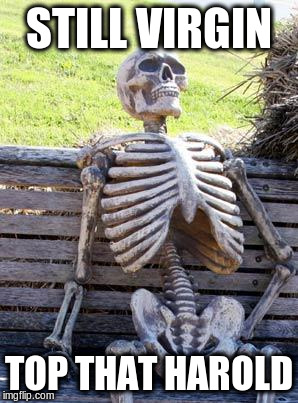 Waiting Skeleton Meme | STILL VIRGIN TOP THAT HAROLD | image tagged in memes,waiting skeleton | made w/ Imgflip meme maker