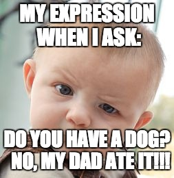 Skeptical Baby Meme | MY EXPRESSION WHEN I ASK: DO YOU HAVE A DOG?  NO, MY DAD ATE IT!!! | image tagged in memes,skeptical baby | made w/ Imgflip meme maker