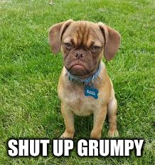 SHUT UP GRUMPY | made w/ Imgflip meme maker