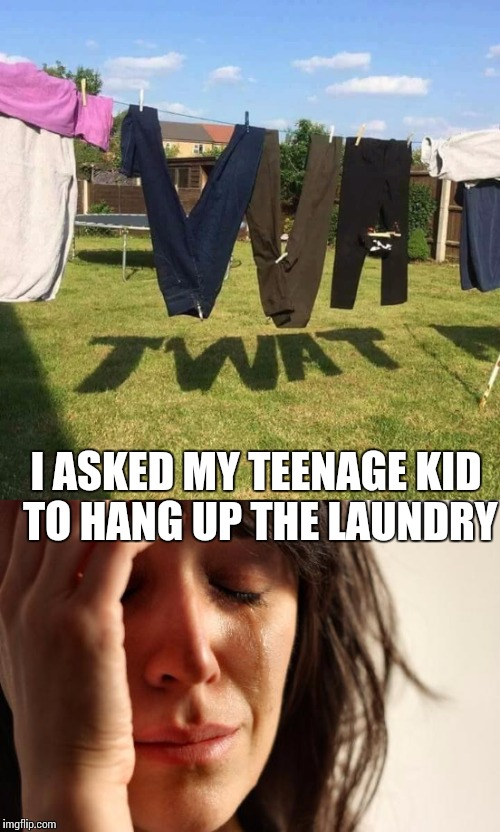 Damn kids | I ASKED MY TEENAGE KID TO HANG UP THE LAUNDRY | image tagged in nsfw,first world problems | made w/ Imgflip meme maker