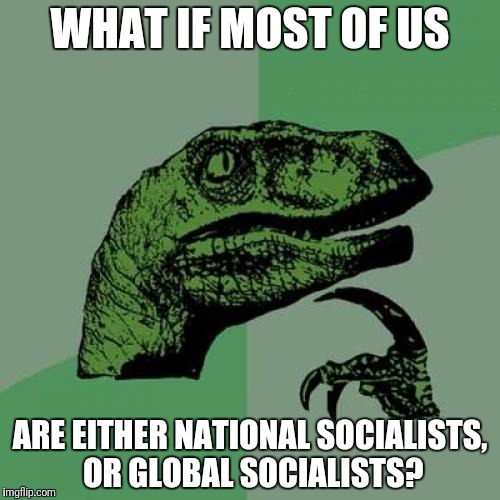 Philosoraptor | WHAT IF MOST OF US ARE EITHER NATIONAL SOCIALISTS, OR GLOBAL SOCIALISTS? | image tagged in memes,philosoraptor | made w/ Imgflip meme maker