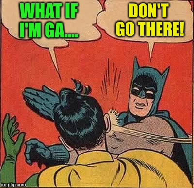 Batman Slapping Robin Meme | WHAT IF I'M GA.... DON'T GO THERE! | image tagged in memes,batman slapping robin | made w/ Imgflip meme maker