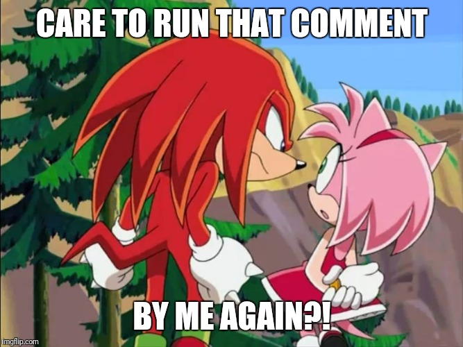 When you catch someone talking about you behind your back. | CARE TO RUN THAT COMMENT BY ME AGAIN?! | image tagged in sonic the hedgehog,knuckles | made w/ Imgflip meme maker