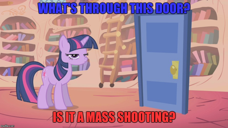 WHAT'S THROUGH THIS DOOR? IS IT A MASS SHOOTING? | made w/ Imgflip meme maker