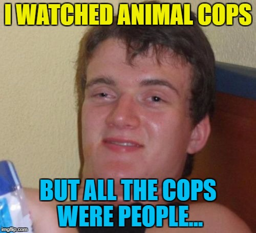 Someone should tell them... :) | I WATCHED ANIMAL COPS BUT ALL THE COPS WERE PEOPLE... | image tagged in memes,10 guy,animal cops,tv,animals | made w/ Imgflip meme maker