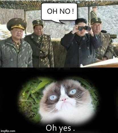 This my son, is how we won the Cold War with North Korea  | image tagged in north korea,grumpy cat | made w/ Imgflip meme maker