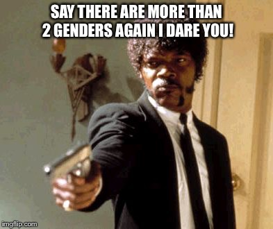 Say That Again I Dare You Meme | SAY THERE ARE MORE THAN 2 GENDERS AGAIN I DARE YOU! | image tagged in memes,say that again i dare you | made w/ Imgflip meme maker