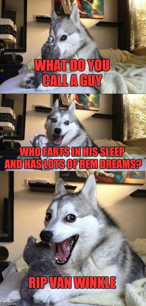 YAY for Stupid Puns! | WHAT DO YOU CALL A GUY WHO FARTS IN HIS SLEEP AND HAS LOTS OF REM DREAMS? RIP VAN WINKLE | image tagged in memes,bad pun dog | made w/ Imgflip meme maker