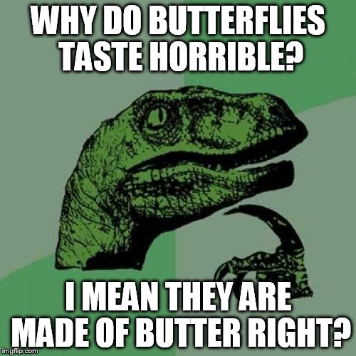 Philosoraptor Meme | WHY DO BUTTERFLIES TASTE HORRIBLE? I MEAN THEY ARE MADE OF BUTTER RIGHT? | image tagged in memes,philosoraptor | made w/ Imgflip meme maker