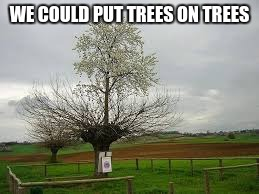 WE COULD PUT TREES ON TREES | made w/ Imgflip meme maker