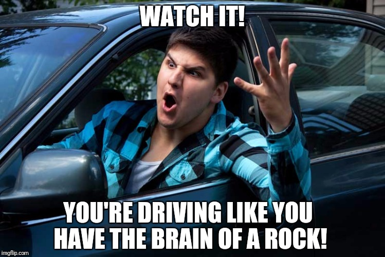WATCH IT! YOU'RE DRIVING LIKE YOU HAVE THE BRAIN OF A ROCK! | made w/ Imgflip meme maker