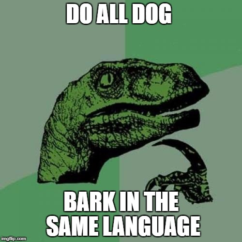 Philosoraptor Meme | DO ALL DOG BARK IN THE SAME LANGUAGE | image tagged in memes,philosoraptor | made w/ Imgflip meme maker
