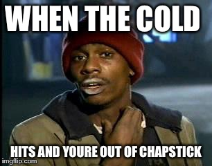 Y'all Got Any More Of That Meme | WHEN THE COLD HITS AND YOURE OUT OF CHAPSTICK | image tagged in memes,yall got any more of | made w/ Imgflip meme maker