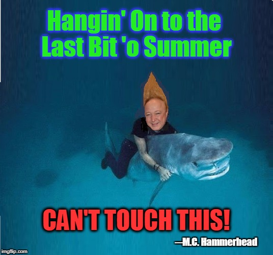 Saying Goodbye to the Summer of '17 | Hangin' On to the Last Bit 'o Summer CAN'T TOUCH THIS! ─M.C. Hammerhead | image tagged in vince vance,tall hair dude,riding a shark,shark week,what real men do,ocean | made w/ Imgflip meme maker