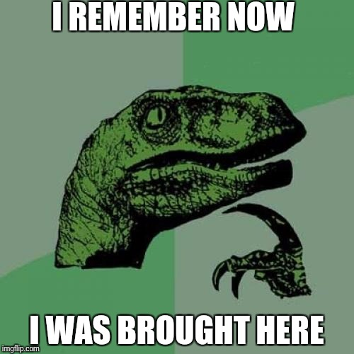 Philosoraptor Meme | I REMEMBER NOW I WAS BROUGHT HERE | image tagged in memes,philosoraptor | made w/ Imgflip meme maker