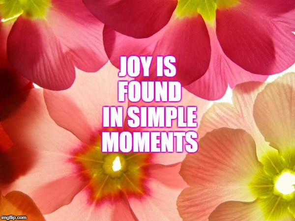 Joy | JOY IS FOUND IN SIMPLE MOMENTS | image tagged in memes | made w/ Imgflip meme maker