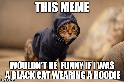 Hoody Cat | THIS MEME WOULDN'T BE  FUNNY IF I WAS A BLACK CAT WEARING A HOODIE | image tagged in memes,hoody cat | made w/ Imgflip meme maker