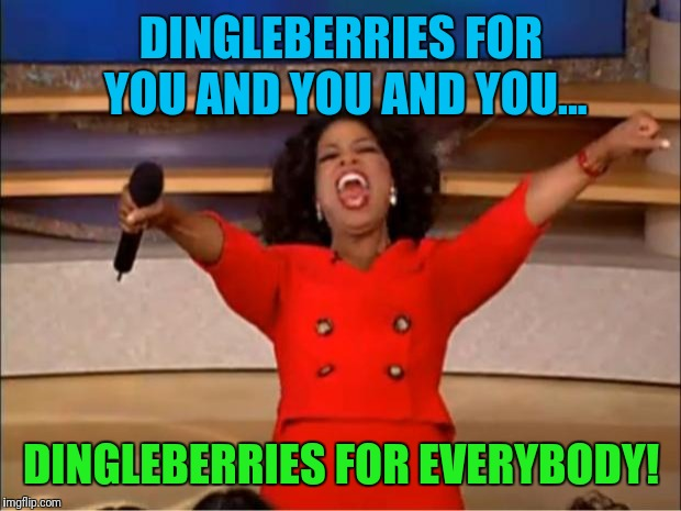 Oprah You Get A Meme | DINGLEBERRIES FOR YOU AND YOU AND YOU... DINGLEBERRIES FOR EVERYBODY! | image tagged in memes,oprah you get a | made w/ Imgflip meme maker