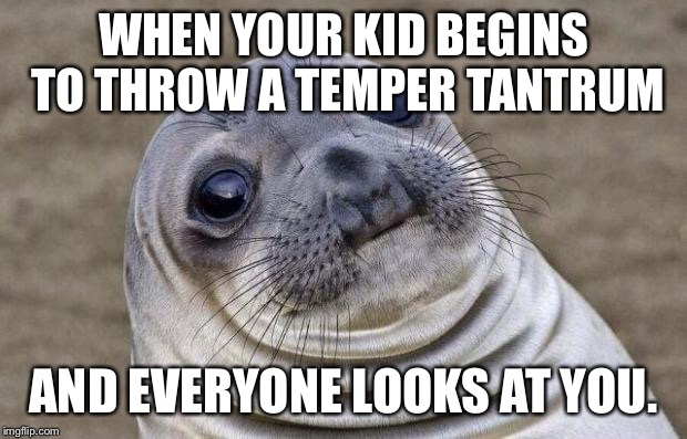 Awkward Moment Sealion Meme | WHEN YOUR KID BEGINS TO THROW A TEMPER TANTRUM AND EVERYONE LOOKS AT YOU. | image tagged in memes,awkward moment sealion | made w/ Imgflip meme maker