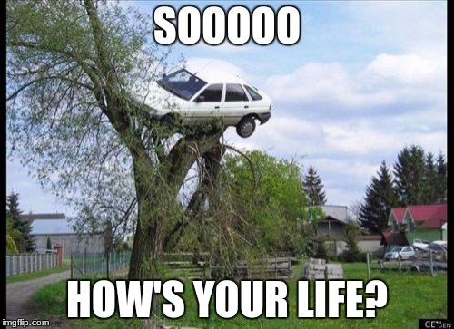 Secure Parking Meme | SOOOOO HOW'S YOUR LIFE? | image tagged in memes,secure parking | made w/ Imgflip meme maker