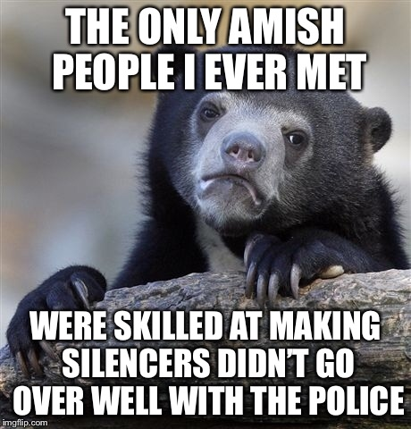 Confession Bear Meme | THE ONLY AMISH PEOPLE I EVER MET WERE SKILLED AT MAKING SILENCERS DIDN'T GO OVER WELL WITH THE POLICE | image tagged in memes,confession bear | made w/ Imgflip meme maker