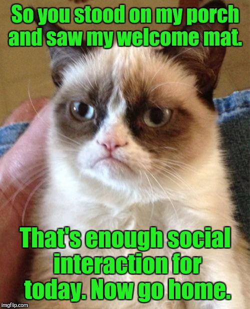 Grumpy Cat Meme | So you stood on my porch and saw my welcome mat. That's enough social interaction for today. Now go home. | image tagged in memes,grumpy cat | made w/ Imgflip meme maker