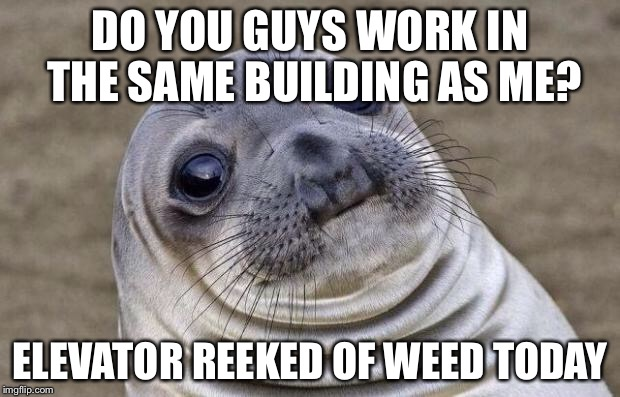 Awkward Moment Sealion Meme | DO YOU GUYS WORK IN THE SAME BUILDING AS ME? ELEVATOR REEKED OF WEED TODAY | image tagged in memes,awkward moment sealion | made w/ Imgflip meme maker