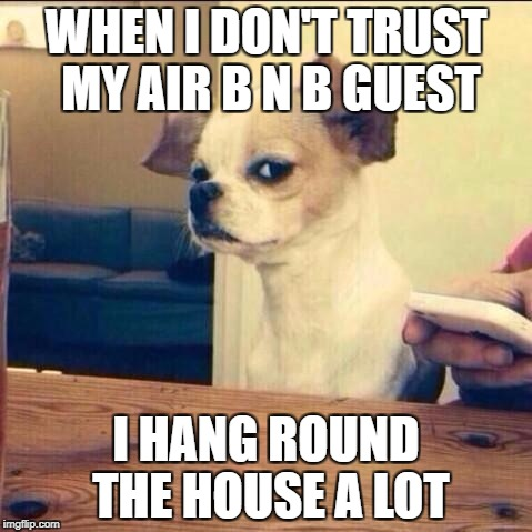 Skeptical Chihuahua | WHEN I DON'T TRUST MY AIR B N B GUEST I HANG ROUND THE HOUSE A LOT | image tagged in skeptical chihuahua | made w/ Imgflip meme maker