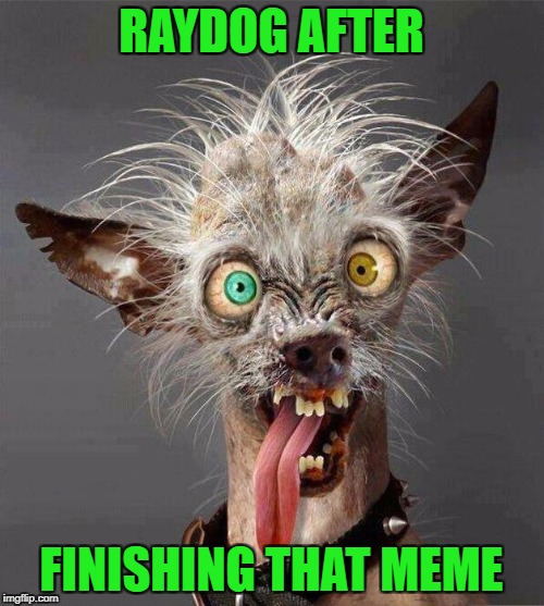 RAYDOG AFTER FINISHING THAT MEME | made w/ Imgflip meme maker
