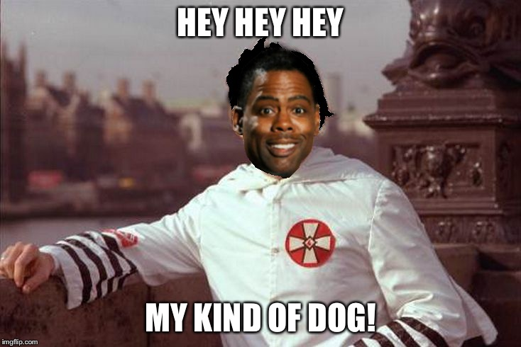 Chris Rock | HEY HEY HEY MY KIND OF DOG! | image tagged in chris rock | made w/ Imgflip meme maker