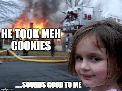 IF YOU GIVE A GIRL MATCHSTICKS BY XxDANK MEME LORDxX | HE TOOK MEH COOKIES .....SOUNDS GOOD TO ME | image tagged in memes,disaster girl,cookies | made w/ Imgflip meme maker