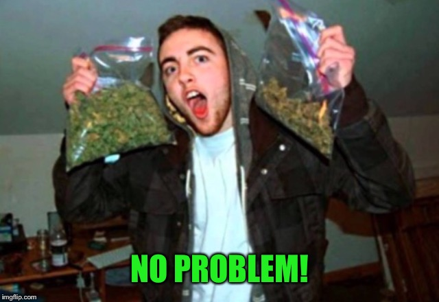 Kid with bags of weed | NO PROBLEM! | image tagged in kid with bags of weed | made w/ Imgflip meme maker