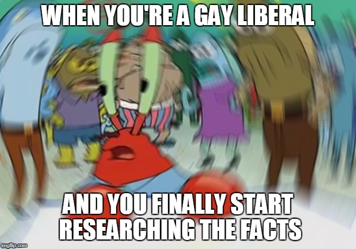 Mr Krabs Blur Meme |  WHEN YOU'RE A GAY LIBERAL; AND YOU FINALLY START RESEARCHING THE FACTS | image tagged in memes,mr krabs blur meme | made w/ Imgflip meme maker