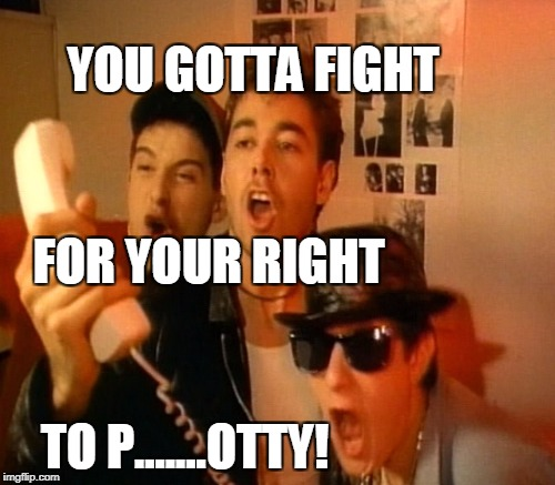 YOU GOTTA FIGHT TO P.......OTTY! FOR YOUR RIGHT | made w/ Imgflip meme maker