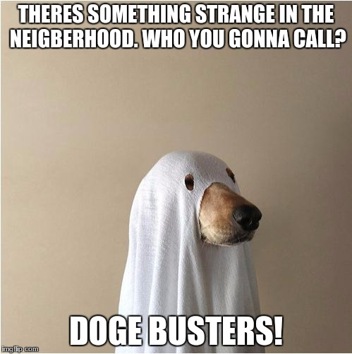 Ghost Doge | THERES SOMETHING STRANGE IN THE NEIGBERHOOD. WHO YOU GONNA CALL? DOGE BUSTERS! | image tagged in ghost doge | made w/ Imgflip meme maker