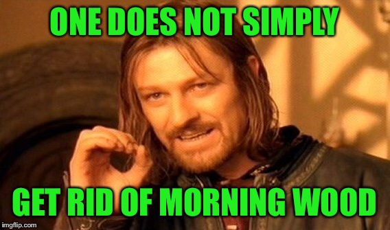 One Does Not Simply Meme | ONE DOES NOT SIMPLY GET RID OF MORNING WOOD | image tagged in memes,one does not simply | made w/ Imgflip meme maker