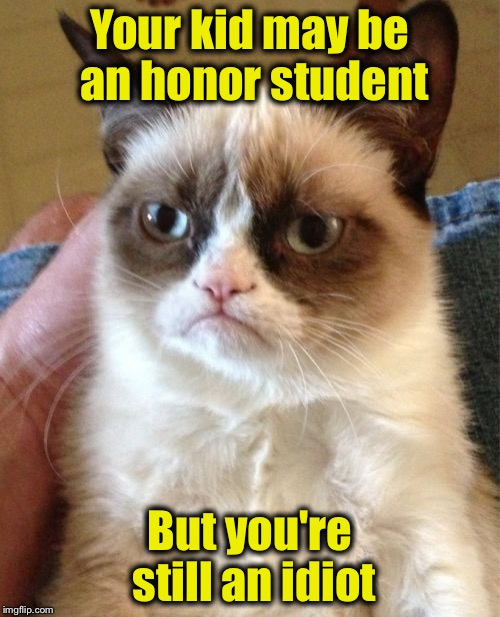 Grumpy Cat Meme | Your kid may be an honor student But you're still an idiot | image tagged in memes,grumpy cat | made w/ Imgflip meme maker