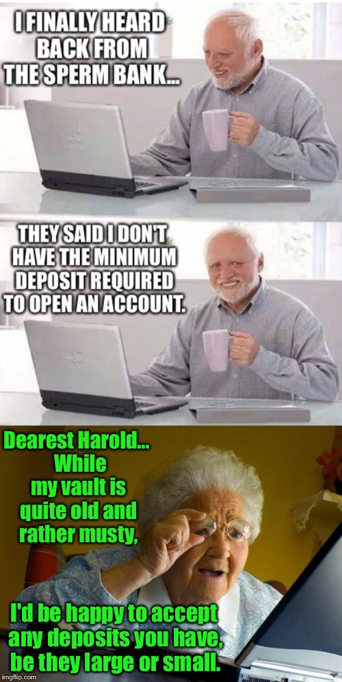Meme Wars - A Pipe_Picasso And Raveniscool27 Event - Sub 5 | Dearest Harold... While my vault is quite old and rather musty, I'd be happy to accept any deposits you have, be they large or small. | image tagged in meme war,hide the pain harold,grandma finds the internet,bank | made w/ Imgflip meme maker