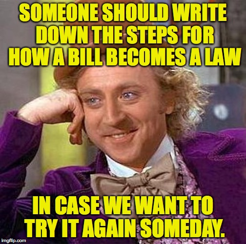 Creepy Condescending Wonka Meme | SOMEONE SHOULD WRITE DOWN THE STEPS FOR HOW A BILL BECOMES A LAW IN CASE WE WANT TO TRY IT AGAIN SOMEDAY. | image tagged in memes,creepy condescending wonka | made w/ Imgflip meme maker