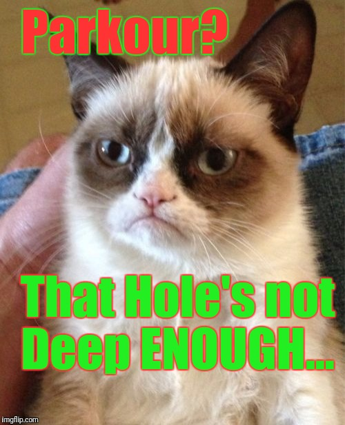 Grumpy Cat Meme | Parkour? That Hole's not Deep ENOUGH... | image tagged in memes,grumpy cat | made w/ Imgflip meme maker