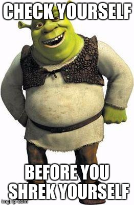 shrek | CHECK YOURSELF BEFORE YOU SHREK YOURSELF | image tagged in shrek | made w/ Imgflip meme maker