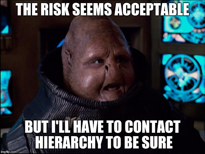 THE RISK SEEMS ACCEPTABLE BUT I'LL HAVE TO CONTACT HIERARCHY TO BE SURE | made w/ Imgflip meme maker